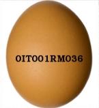 qualidade do ovo